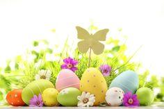 wallpaper ostern mit gefärbten Eiern und Schmetterling Figur