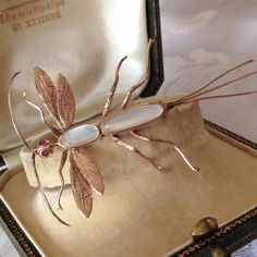 Antique SUPERB 10 or 12ct ROSE GOLD Very LARGE Moonstone Ruby Bug Insect Brooch