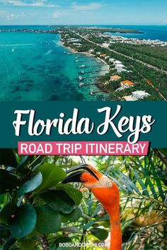 travel destinations tropical The Perfect 5 Day Florida Keys Road Trip Itinerary - Bobo and ChiChi Road Trip Florida, Florida Travel Guide, Us Road Trip, Visit Florida, Florida Vacation, Vacation Spots, The Florida Keys, Key West Florida, Florida Beaches
