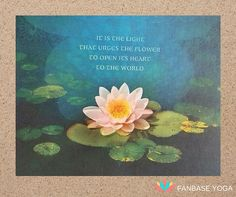 It is the LIGHT that urges the flower to open its heart to the world. #yoga #inspiration