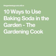 10 Ways to Use Baking Soda in the Garden - The Gardening Cook