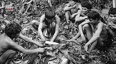 Pendidikan: Suku Kanibal