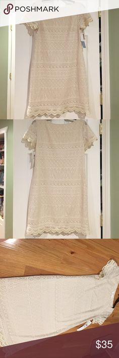London Times Cream Lace Dress Brand new beautiful cream-white Lace dress. Great dress for a nice event,  dinner, brunch, rehearsal, etc. 100% polyester.  All offers are considered! Consider a bundle deal too! Ask any questions or for more pictures 😁 London Times Dresses Mini