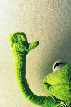 Rana Rene green beautiful Funny Picture Quotes, Funny Pictures, Frog Quotes, Funny Jokes, Hilarious, Mexican Memes, Frases Humor, Spanish Humor, Kermit The Frog