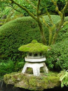 Moss on top of a Japanese Lantern