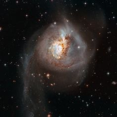 Hubble Space Telescope The Clash of NGC 3256 is the aftermath of a truly cosmic collision. The 500 millon year old of two galaxies spans some 100 thousands light-years in this sharp Hubble view. Hubble Photos, Hubble Images, Cosmos, Field Camera, Galaxy Photos, Astronomy Pictures, Spiral Galaxy, Star Formation, Andromeda Galaxy