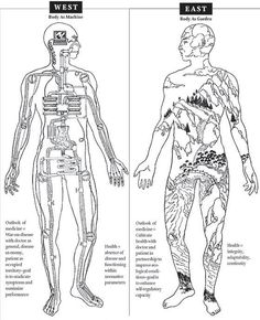 Western medicine sees the body as a machine. Eastern medicine see the body as a garden. medicine says it can be both! Eastern Medicine, Acupressure Treatment, Traditional Chinese Medicine, Qigong, Herbal Medicine, Holistic Medicine, Holistic Healing, Massage Therapy, Alternative Medicine