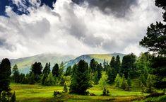 Die Heimat von Nocky Flitzer & Nocky´s Almzeit Turracher Höhe - eines von Kärntens Top 10 Ausflugszielen - ist gesegnet mit besonderen natürlichen Attraktionen. Einmalige landschaftliche Plätze und Wege zum Wandern, abschalten und genießen.  Die Turracher Höhe bettet sich in den Gurktaler Alpen zwischen Kärnten und Steiermark. Urlaub in Österreich:  Wandern, Mountainbiken, Schi fahren, entspannen, eine atemberaubend schöne  Landschaft genießen. Auch bei Regenwetter, wie hier am Bild. Mountains, Nature, Travel, Water Playground, Roller Coaster, Viajes, Traveling, Nature Illustration, Off Grid