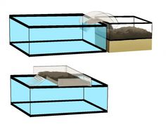New Images turtles pet tanks Tips Young children use a pure involvement with the globe all over these folks, therefore it is no surprise why tu Aquatic Turtle Habitat, Aquatic Turtle Tank, Turtle Aquarium, Aquatic Turtles, Diy Aquarium, Turtle Basking Area, Turtle Basking Platform, Turtle Pond, Turtle Tank Setup