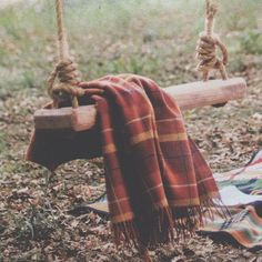Autumn and a rope swing. Image via The Messes of Men.