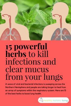 A wave of viral and bacterial infections is sweeping across the Northern Hemisphere and people are taking longer to heal from an array of symptoms within the respiratory system. Here are 15 of the best herbs to boost lung health. #herbs #naturalremedies