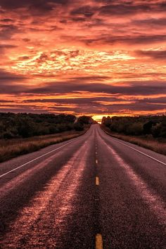 Road, David Sala