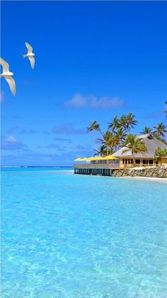 101 Most Beautiful Places You Must Visit Before You Die Fiji Islands. Just one of the 101 Most Beautiful Places You Must Visit Before You Die. Vacation Places, Dream Vacations, Vacation Spots, Places To Travel, Places To See, Travel Destinations, Tropical Vacations, Tropical Beaches, Holiday Destinations
