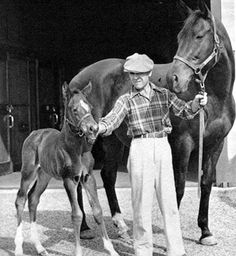 """Rapturesrevenge asked: """"If you could go back in time, Twilight Tear as a mama"""" That's the great Twilight Tear with her 1949 Blenheim filly A Gleam, who would go on to an impressive racing career in. Calumet Farm, Horse Racing, Race Horses, Horse Names, Thoroughbred Horse, Mans Best Friend, Twilight, 8 Seconds, Ponies"""