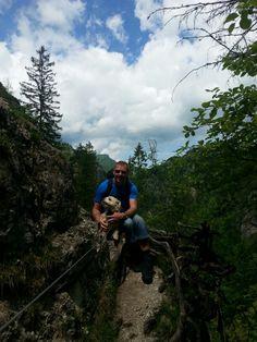 Ötschergräben Mountains, Nature, Travel, Naturaleza, Viajes, Destinations, Traveling, Trips, Nature Illustration