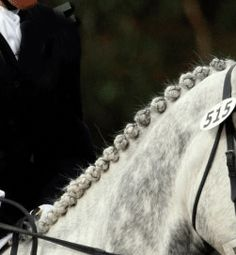 Sporthorse Knots/ Dressage Balls/ Eventing Bumps/ etc. for Dressage, Eventing, Show Jumping, In Hand Showing
