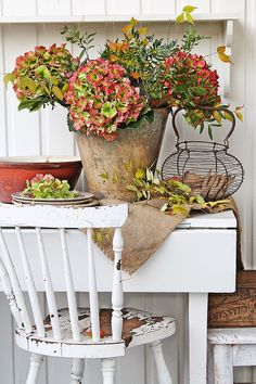 Hydrangea for the holidays: VIBEKE DESIGN