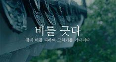 세상을 즐겁게 피키캐스트 Best Quotes, Life Quotes, Good Sentences, Korean Words, Message Quotes, Learn Korean, Typography, Lettering, Korean Traditional