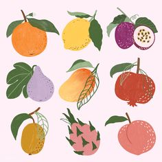 Peach Wallpaper, Framed Wallpaper, Fruits Drawing, Fruit Illustration, Illustration Fashion, Hand Images, Free Hand Drawing, Pineapple Design, Fruit Painting