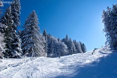 Cerkno ski resort offers wide & gentle slopes. Perfect for carving!