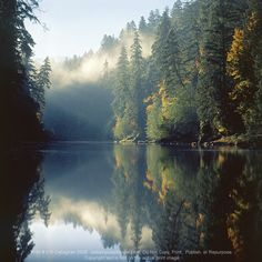 North Umpqua River in Southern Oregon... one of the most beautiful areas in the Northwest.