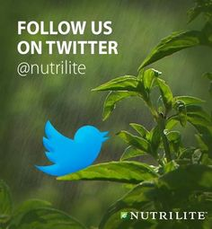 Nutrilite - #1 Health and Wellness Brand on the planet, does about 7.5 Million dollars more a DAY than GNC. Has ambassadors on MLB, NFL, NHL, NBA, Soccer teams, marathon runners, Olympians, good stuff.