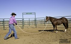 Exercise #40: Run Up & Rub  Goal: To be able to run up to the colt from any angle and have him stand still and relax.  https://www.downunderhorsemanship.com/Store/Product/MEDIA/D/2896/