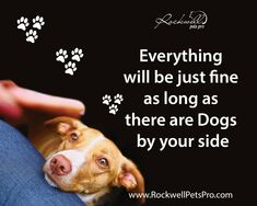 Everything will be just fine  as long as there are Dogs by your side. www.rockwellpetspro.com #DOG