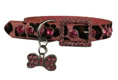 Bling Dog Collar-Haute & Trendy Accessories for Dogs