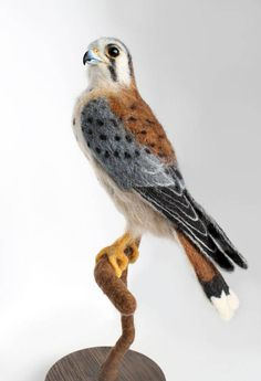 READY TO SHIP! This needle felted, American Kestrel Sculpture Stands 14.5 inches tall, on a solid wooden base. The bird has glass eyes and a hand sculpted, hand painted beak. The bird measures 10 inches from head to tip of tail feathers and is 7.5 inches tall. The wooden base is 5