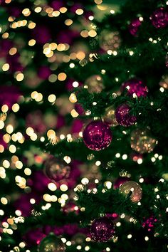🎄Buon Natale e Felice Anno Nuovo🎄Merry Christmas and Happy New Year🎄 Purple Christmas, Christmas Time Is Here, Merry Little Christmas, Christmas Love, Beautiful Christmas, Winter Christmas, Christmas Trees, Christmas Ornaments, Gold Ornaments
