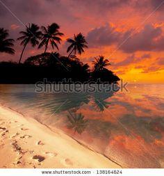 Tropical beach by Galyna Andrushko, via Shutterstock