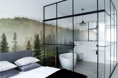 Annals of Bad Design: Glass Walled Bathroom in a Bedroom