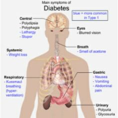 Natural Way To Treat Diabetes Type