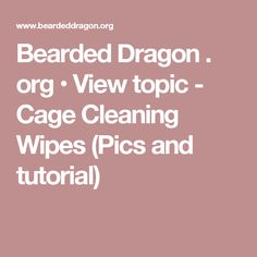 Bearded Dragon . org • View topic - Cage Cleaning Wipes (Pics and tutorial)