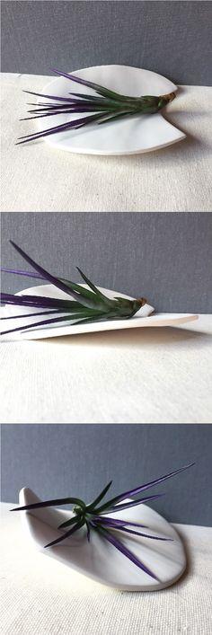 Handmade ceramic air plant dishes. Find more on Etsy at yeshelloitsmedesigns. #etsyshop #etsyseller #etsy #etsystyle #airplants #airplantholder #airplantdish #airplantdecor #plants #houseplants #jewelrydish #smallgifts #giftsforher #giftideas #giftsformom #indoorplants #plantdecor #officedecor #coffeetable #centerpiece #handmade #handmadegift #ceramics #handmadeceramics
