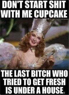 Glenda the kick-ass bitch witch! - Sarcasm Meme - Sarcasm Meme ideas - The post Glenda the kick-ass bitch witch! appeared first on Gag Dad. Haha Funny, Funny Jokes, Hilarious, Funny Stuff, Funny Life, Sarcastic Laugh, Sarcastic Quotes, Funny Sister Quotes, Halloween Ideas