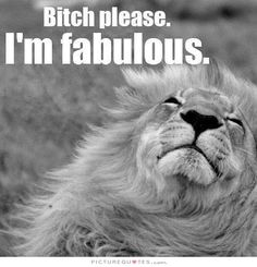 Bitch please. I'm fabulous Picture Quote Im Fabulous, Fabulous Quotes, Leo Personality, Lion Quotes, Lion Images, Motivational Picture Quotes, Leo Love, Bitch Quotes, Frases