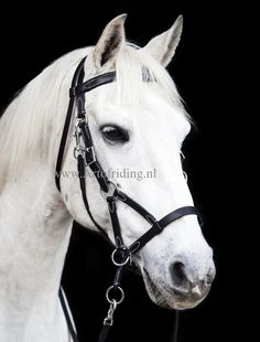 ✨Stock Clearance ✨ Bitless Bridle Two - Last Items for sale prices 🥰 The two in one bitless bridle that can be used as a Side Pull and as a Cross-over. The Polypropylene jaw cords can be easily and quickly removed with clip closure to create a SidePull. 🙌The bridle is adjustable on the cheek pieces, jaw strap, and chin strap, and it provides a straight browband and comes with reins.👏 The bridle is available in the size pony, cob, and full and black and brown colors. Stock Clearance, Brown Colors, Cob, Black And Brown, Two By Two, Horses, Closure, Create, Horse