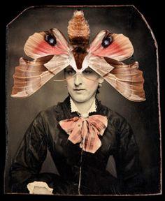 darksilenceinsuburbia:  Jo Whaley. Smerinthus saliceti, 2010.  http://www.jowhaley.com/