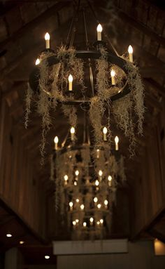 Ways to Have the Chicest Halloween Wedding Ever Moss covered chandeliers take your Halloween wedding decor up a notch.Moss covered chandeliers take your Halloween wedding decor up a notch. Halloween Cupcakes, Halloween Snacks, Halloween Themes, Halloween Diy, Vintage Halloween, Halloween Costumes, Halloween Weddings, Halloween Wedding Decorations, Voodoo Halloween