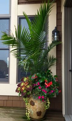 Container Gardening Ideas - Best and Unique Summer Planter Ideas to Beautify Your Home. Planting a container garden is not always about gardening in small spaces but using containers is a great way to create a minimalist gard… Patio Plants, Outdoor Planters, Garden Planters, Outdoor Gardens, Planter Pots, Tall Planters, Planters Around Pool, Outdoor Decor, Container Flowers