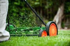 According to Lawn Mowing Cumming Mowing very short weakens the grass plant, making it more vulnerable. The best way to lush, thick lawns is mowing high Lawn Problems, Care Calendar, Push Lawn Mower, Lawn Care Tips, Grass Seed, Green Lawn, Ana White, Backyard Landscaping, Landscaping Ideas