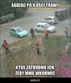 Very Funny Memes, Haha Funny, Lol, Polish Memes, Funny Mems, Daily Funny, Read News, Pranks, Best Memes