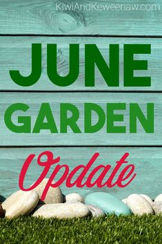 June Frugal Garden Update Gardening tips in the Midwest. Pure Michigan gardening to save money on groceries and eat healthy! A great guide for the beginner gardener.