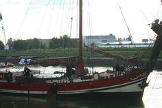 bietentocht 2013 aan het Benedensas, foto gerrit groeneweg