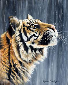 Tigre sous la pluie by tikillian via http://ift.tt/291WOCt