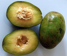 Ciruelas fruit - Ecuador  (Pommelicitair - Suriname)