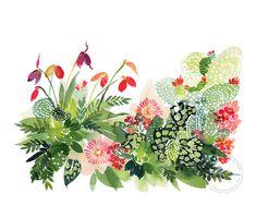 Yao Cheng Design - Cactus Panorama - Watercolor Art Print, Framed