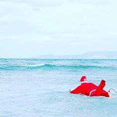 サンタシリーズ第弾 ゲッティングアウト サンタさんのバカンスももう直ぐ終わり みなさんもうChristmasプレゼントはもう決まってますか プレゼントに沖縄旅行オススメですよ #サンタ #santa #xsmas #christmas #seanasurf #シーナサーフ #surf #surfinschool #サーフィン #サーフィンスクール #沖縄 #旅行 #沖縄旅行 #沖縄旅行計画 #okinawa #trip #プレゼント #present #get #ゲッティングアウト #オススメ #バカンス #vacances